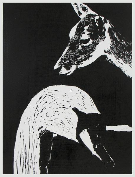 Deer Swan