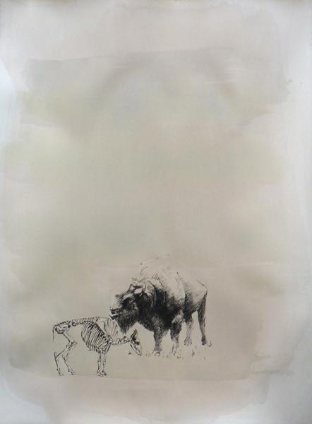 Animal Revival I/2 (European Bison)