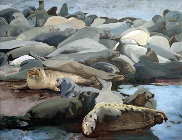 Seals and Shapes