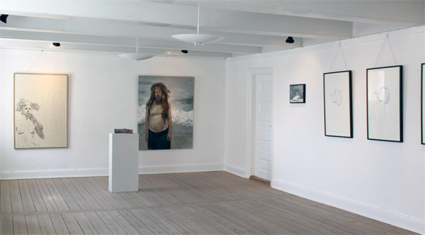 Exhibition view - Frozen Hawaii, Toldboden, Kerteminde, Denmark