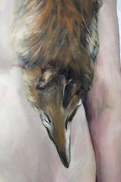 Foxy Tourist, Explorer Number 2 - Detail Fox