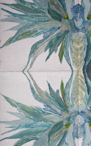 Agave Americana Plant Plié I