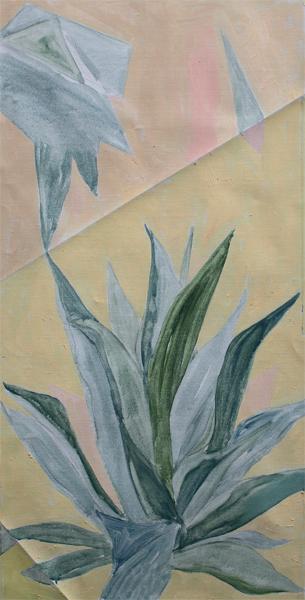 Agave Americana Plant Plié VI