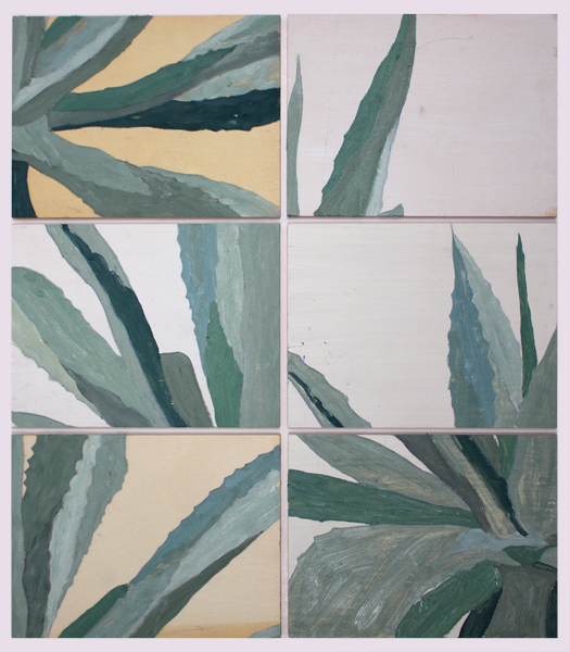 Agave Americana Modulations - different set up
