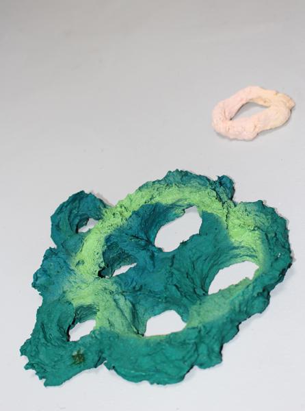 Laminaria Sporangium - Green and Rosa Cells