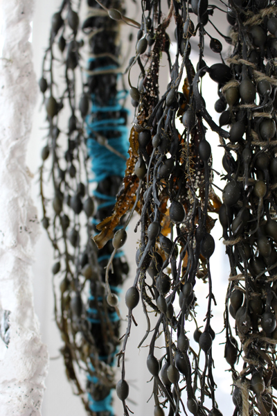 Knobbed wrack Chandelier