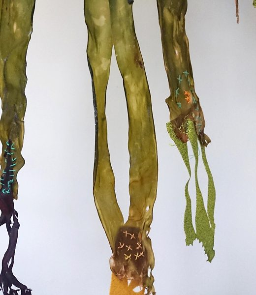 Kelp Embrodery. Cross Strich Composition