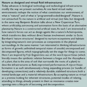 Nature as designed and virtual fluid infrastructures